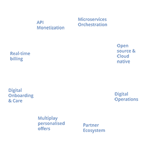 Middle-BSSSuite5-002